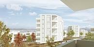 Testplanung Areal Hangenmoos<br />Wädenswil 2014<br />Wettbewerb Städtebau