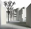 Wohnhaus Feldeggstrasse<br />Zürich 2008<br />Wettbewerb Wohnen